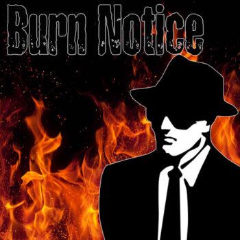 Burn Notice*Ian Nelson*Saint Luna*Hand Made House*RedPillars